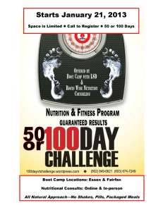 100_day_challenge_flyer_2013